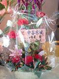 flower1203~0001.JPG