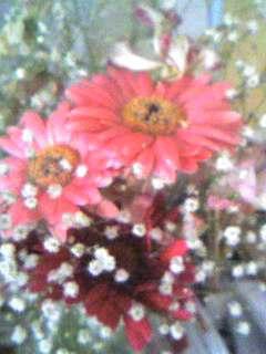 image/reach-2008-04-13T16:51:34-1.jpg